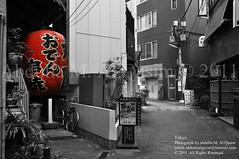 Tokyo (Vision Maker) Tags: street light red monochrome japan japanese tokyo blackwhite ship 24 swy shipforworldyouth swy24