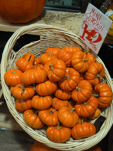 mini pumpkins.jpg