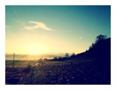 Vast beauty (noelboss) Tags: morning light sun fall sunrise switzerland bern eiger jungfrau iphone mönch