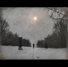 Passage (h.koppdelaney) Tags: life winter woman snow art rose digital photoshop search gate december heart symbol picture philosophy quest metaphor passage grail pilgrimage psyche symbolism psychology archetype koppdelaney