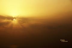 The golden mist (Fares Al-876ANI) Tags: light sky sun mist clouds sunrays lightrays سماء الشمس سحاب أشعة ضباب سحب شعاعالشمس