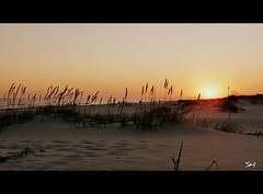 Sunset (Suzanham) Tags: ocean sunset beach sand seaoats fortmorgan absolutelyperrrfect