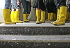 Yellow rubber boots (michael_hamburg69) Tags: yellow germany deutschland tour boots hamburg marion rubber baustelle gelb photowalk constructionsite gummistiefel gumboots katrin hansestadt rundgang guidedtour besichtigung führung elbphilharmonie baustellenbesichtigung