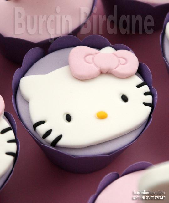 Dis Bugdayi Cupcake 2