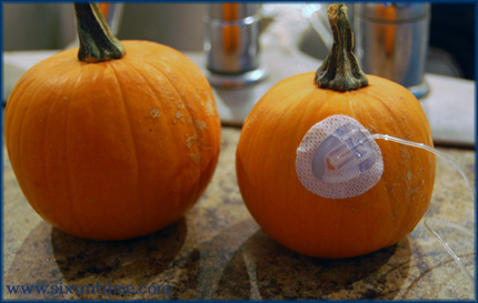 No, I didn't waste an infusion set, silly.  I ripped this one out of myself and then stuck it into a pumpkin.  Sanitary!!
