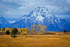 Grand Teton National Park, Wyoming (Carini Stefano) Tags: trees snow mountains fall nature colors field canon photo october scenery wyoming picnik stormyclouds 2011 mtmoran rebelxti cowboystate grandtetonnationalparkwyoming mygearandme ringexcellence stcphoto musictomyeyeslevel1 stefanoinseidaho