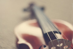 235/365: musica (juie8) Tags: light music nikon mood dof 55mm violin geige project365