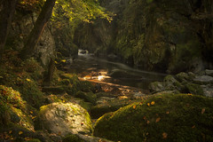 A little sunlight (Jo Bowman) Tags: trees sunlight green moss rocks stream tripod gorge walls trunks sigma1020mm canon60d bloodybeautiful jobowman2014