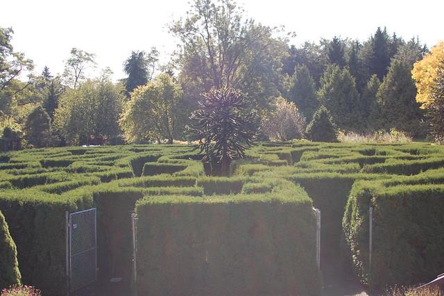 Van Dusen Gardens