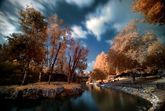 Nothing's gonna change my world (FX-1988) Tags: world ir zoo israel jerusalem infrared change gonna biblical nothings