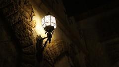_DSC2460 (haphopper) Tags: light  themepark tokyodisneysea tds tdr 2011     arabiancoast