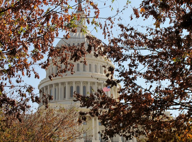 Autumn at the capitol