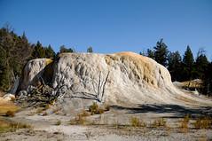 Yellowstone -1299 (MSMcCarthy Photography) Tags: nikon yellowstonenationalpark yellowstone geyser geologicalformation msm62166 msmccarthyphotography