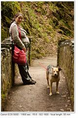 2010_05_20_2740 (John P Norton) Tags: dog waiting unitedkingdom daughter lakedistrict mother cumbria f56 ullswater shutterpriority 1800sec canoneos500d focallength55mm efs1855mmf3556is copyright2010johnnorton