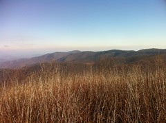 View From Sam Knob South Peak 1