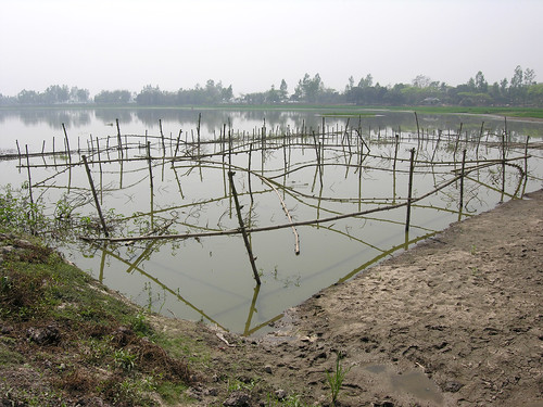Fish sanctuary, Bangladesh. Photo by Peter Fredenburg, 2009