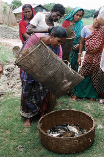 Woman with her catch, Bangladesh. Photo by WorldFish, 2008