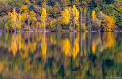 Riverbank of Drina (Iris (Irene Becker)) Tags: morning autumn forest niceshot serbia canyon autumnleaves balkan srbija srb drina 2011 jesen zlatibor taramountain peruac bajinabasta canon7d zapadnasrbija doubleniceshot mygearandme mygearandmepremium mygearandmebronze mygearandmesilver mygearandmegold mygearandmeplatinum mygearandmediamond irenebecker nacionalniparktara kanjondrine irenebeckerorg taranationalpark drinariverkanyon imagesofserbia  taranacionalnipark landscapesofserbia serbianlandscapes