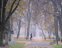 (ela_s) Tags: park canon krakow explore s90 poranek jesień mgła parkjordana