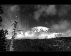 Mt Rainier Paradise (Kartik J) Tags: park trees sky usa sun mountain clouds landscape washington paradise day mt sony hill clear mount national rainier dslr 1500 kartik jayaraman sonyalphadslr sal18250