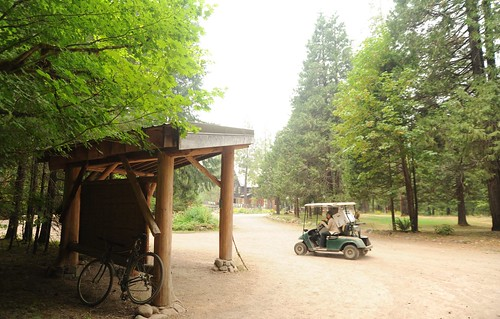 Delivery cart, display area, bike, forest, and the lodge in the distance, Breitenbush Hot Springs, Breitenbush, Marion County, Oregon, USA by Wonderlane