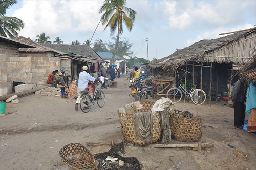 Fish market in Kilwa Kivinjie