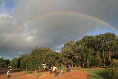 under the rainbow (superholly0926) Tags: island australia kangaroo adelaide southaustralia  sealink  remarkablerocks flinderschase flinderschasenationalpark   koalawalk