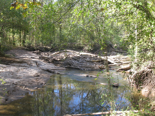 Looking downstream at the same wood jam (Photo by A. Jefferson, 2011)