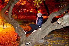 (Tessa Beligue) Tags: street newyorkcity trees people night contrast dark interesting intense emotion unique citylife dramatic places things blanca emotive astounding perfectlight nycart jhoodpark wwwtessabeliguecom tessabeligue tessabeliguephotography