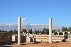 Anjar, Umayyad city, al-Walid I, 705-15, great palace (7) (Prof. Mortel) Tags: lebanon umayyad anjar