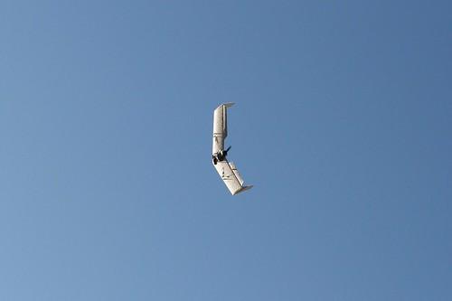 Nurflügler
