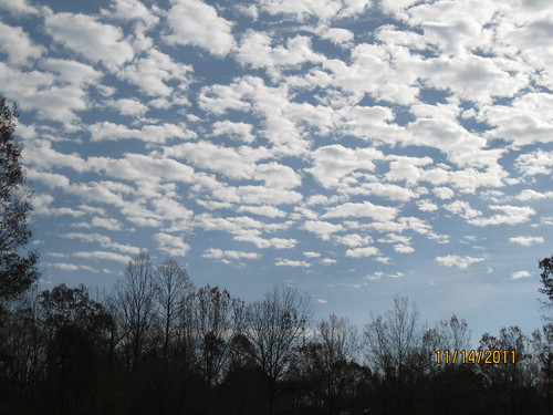 11/14/11: Pretty clouds.