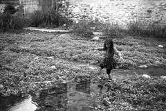 River crossing (Garlap) Tags: china leica film 35mm guangdong shenzhen epson v600 135 m6 f50 f35 summaron leitz 3535 polypan push200