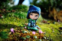 She's as sweet as the little flowers (jessi.bryan) Tags: flowers moss spring doll blythe eurotrash ebl customblythe fancypansy wingsinflight blythejacket vainilladolly vainilladollyblythe