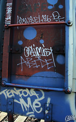 \ (Eclectic Dyslexic) Tags: train de graffiti optimist tenfold freight amuse abide oddio plantrees