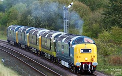 Deltics 55022 D9009 D9016 55019 55002 on 0Z45 Northallerton Reversing Line - Shildon (Bolckow) Tags: uk england train br power durham diesel sony transport traction rail railway loco trains locomotive motive dslr railways napier convoy ee beasts picnik 1000views dps clag deltic britishrailways englishelectric rsg a390 shildon class55 brblue d9000 brgreen 55002 55022 d9009 55019 d9019 55009 d9016 55016 type5 d9002 0z45 5deltics deltic50th