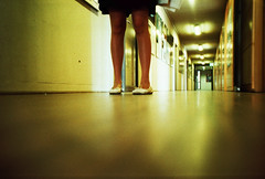in the long corridor of the soul (mikeasaurus) Tags: brown black color colour green film yellow analog munich bayern bavaria lomo lca xpro kodak corridor gelb analogue grn braun elitechrome schwarz 100asa flur expired2003 thelegshaveit september2011