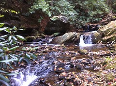Falls on Rock Creek 1