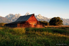 Moulton Barn, Mormon Row, Grand Teton at Sunrise (Andrew Behr) Tags: nature barn sunrise rockies landscapes scenic rockymountains wyoming continentaldivide moulton grandtetonnationalpark gtnp mormonrow antelopeflats moultonbarn scenicbarn