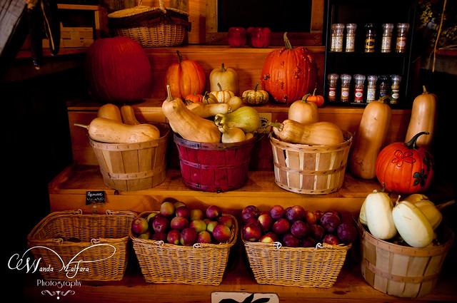 Pumpkins 140