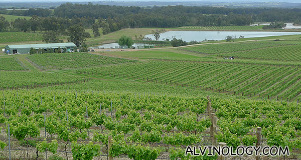 Hunter Valley, Wine County