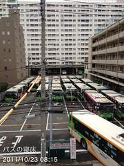 朝散歩(2011/10/23): バスの寝床