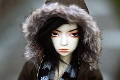 Getting Cold (Army-of-Me) Tags: park autumn japan doll hokkaido bjd dollfie insomnia abjd meiji shinji nemuro insomniadoll