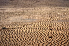 Chapter 7 - Corralejo, the unbereable lightness of the desert (#5): Footprints (stedef) Tags: spain desert fuerteventura canaryislands spagna deserto corralejo canarie olétusfotos mygearandme playasgrandes