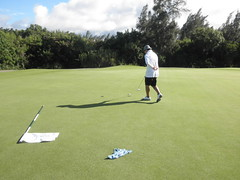 Turtle Bay Colf Course 330
