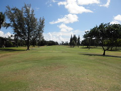 Turtle Bay Colf Course 148