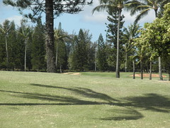 Turtle Bay Colf Course 161