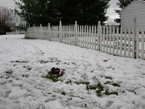 Oct 29 2011 Clark's snowman