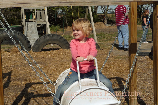 Talia Swing Pumpkin Patch 2011