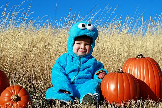 Cookie Monster Halloween 2011